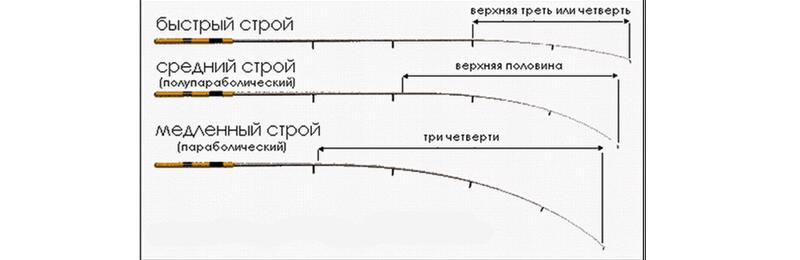 строй фидера